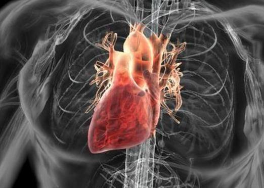 До чого сниться серце?