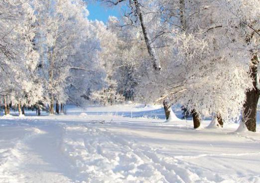 До чого сниться зима?