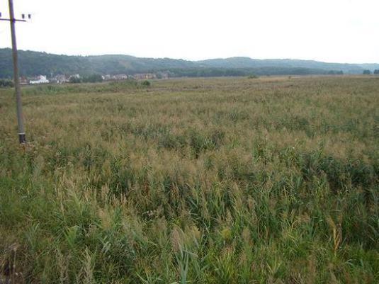 Як знайти земельну ділянку?