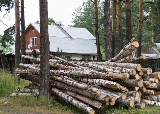 Як отримати ліс для будівництва?