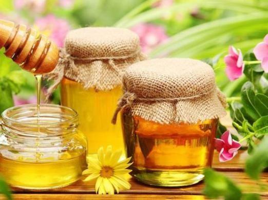Куди здати мед?