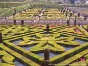 Садово-паркове мистецтво