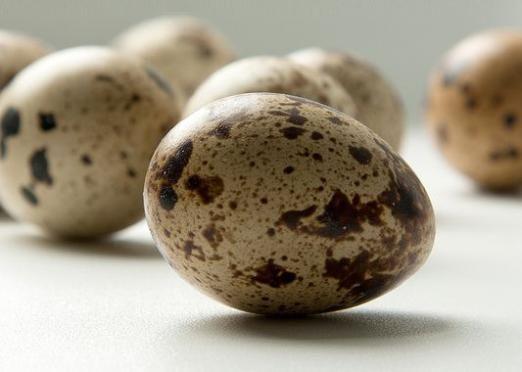 Скільки варити перепелині яйця?